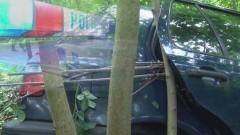 VW GOLF UDERZYŁ W DRZEWO W BĄGARCIE – 13.05.2014