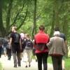 Uratujmy Park w Malborku. Petycja Macieja Ruska o zachowanie funkcji parku miejskiego i nie oddawania jego kolejnych części w dzierżawę - 27.10.2016