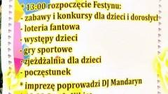 Gmina Ostaszewo. Festyn na sportowo w Gniazdowie - 12.06.2016