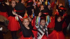 Program WOŚP 2017 w Żuławskim Ośrodku Kultury w Nowym Dworze Gdańskim - 15.01.2017
