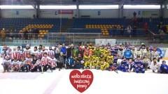 25 Finał WOŚP na lodowisku w Malborku w ramach rozgrywek RLH - 15.01.2017