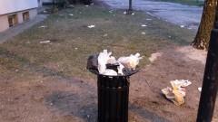 Nowy, zapomniany kosz na śmieci... na Starym Mieście w Malborku - 24.01.2017