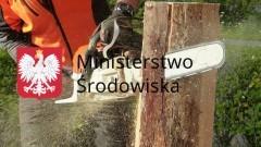 W 2017 r. łatwiej wytniesz drzewo na własnej działce. Nowe przepisy dot. zezwoleń na usuwanie drzew i krzewów - 01.01.2017
