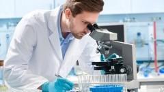 Badanie przeciwciał IgE