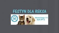 Malbork : Chcesz pomóc zwierzakom z Reksa, a przy tym dobrze się bawić? Przyjdź na festyn! - 22.09.2017
