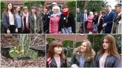 Symboliczne rozpoczęcie współpracy pomiędzy pokoleniami. Członkowie dwóch rad posadzili drzewa przy Urzędzie Miasta Malborka - 19.10.2017