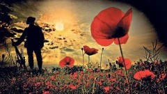 Malbork : Uroczystości na Cmentarzu Żołnierzy Wspólnoty Brytyjskiej - 09.11.2017