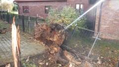 Powalone drzewa, przewrócony komin, zalane piwnice - 22 interwencji Straży Pożarnej w powiecie nowodworskim! - 29 - 30.10.2017