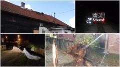 Orkan Grzegorz na Żuławach. Zerwane dachy, powalone drzewa, zalane piwnice. Tragiczny bilans wichury - 30.10.2017