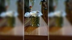 Nowy Dwór Gd., 23-latek zatrzymany za posiadanie narkotyków. -10.11.2017