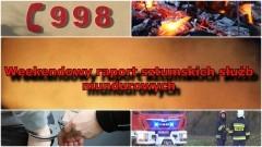 Kolizje, plamy oleju i żmija w piwnicy. Weekendowy raport sztumskich służb mundurowych