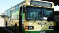 Autobusem MZK Malbork do Parku Miejskiego. Rusza linia nr 8