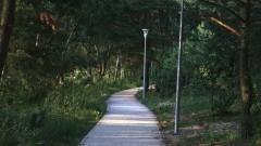 Pielęgnacja oraz wycinka drzew i krzewów w Gminie Stegna- rozeznanie cenowe