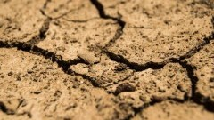 Sztutowo: Komunikat ws. suszy w rolnictwie