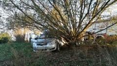Jazowa: Samochód uderzył w drzewo - raport nowodworskich służb mundurowych