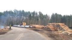 Rozpoczęła się wycinka drzew na miejscu Przekopu Mierzei Wiślanej. Zobacz zdjęcia i wideo