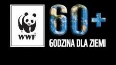 Malbork: Godzina dla Ziemi WWF. Dołącz do akcji.