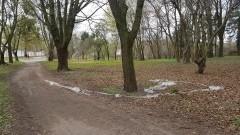 Problem śmieci i samochodów w malborskim parku.