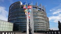 Nowy Dwór Gdański: Wybory do Parlamentu Europejskiego - informacja dla wyborców.