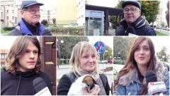 Czy idą państwo na wybory? Sonda uliczna w Nowym Dworze Gdańskim.