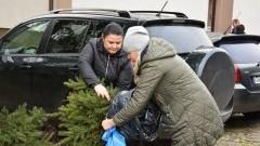 650 sadzonek drzew trafiło do sołtysów z terenu Gminy Nowy Dwór Gdański