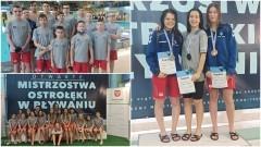 MAL WOPR. Pływacy z Malborka najlepsi podczas mistrzostw w Ostrołęce.