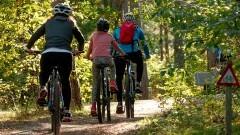 """Malbork. PTTK zaprasza do wzięcia udziału w rajdzie rowerowym """"Wakacje na dwóch kółkach""""."""