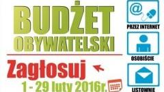 Ruszyło głosowanie w ramach budżetu obywatelskiego Miasta Malborka
