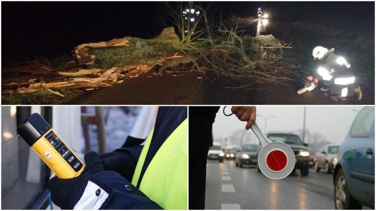Połamane drzewa, palące się sadze i nietrzeźwi kierowcy. Weekendowy raport sztumskich służb mundurowych – 27.12.2016