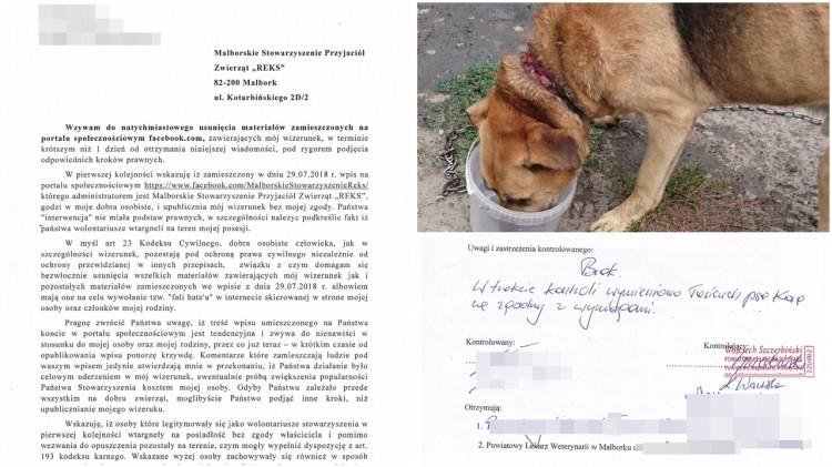 Malbork: Pies z wrośniętym w szyję łańcuchem. Natychmiast został wezwany weterynarz
