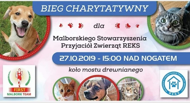Malbork: Bieg charytatywny dla