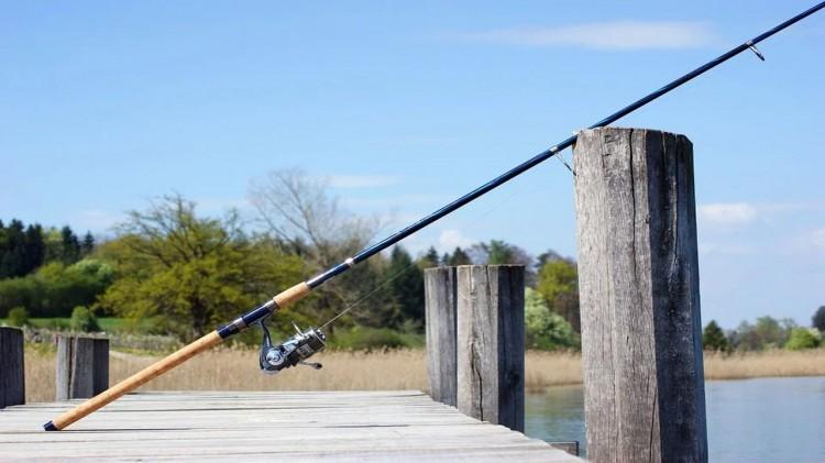 Poszli na rybki, trafili za kratki.