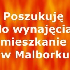Poszukuję do wynajęcia mieszkanie w Malborku