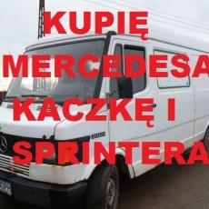 Skup Aut Mercedes Kaczka,Sprinter t.504504891 merc 124,190 i inne Nowy Dwór Gdański,Stegna,Elbląg cała Polska dojadę darmowo